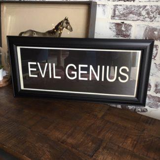 EVIL GENIUS Framed Print