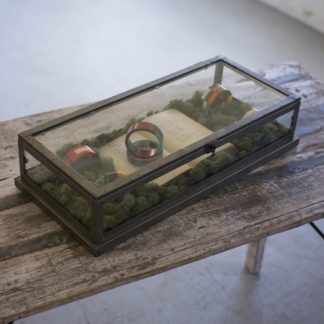 Glass and Metal Display Case