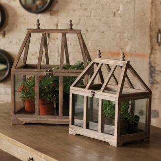 Wood and Glass Terrarium