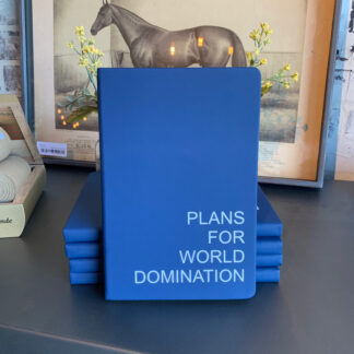 Journal- Plans for World Domination