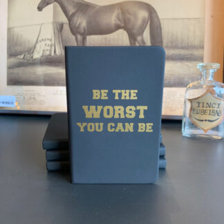Journal- Be the Worst You Can Be
