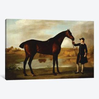 The Duke of Marlborough's Bay Hunter- Framed Canvas Giclee