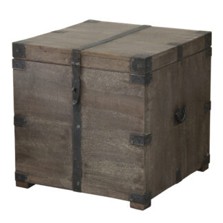 Coale Trunk Side Table