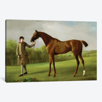 Lustre, Held by Groom- Framed Canvas Giclee