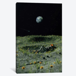A New Home- Framed Canvas Giclee