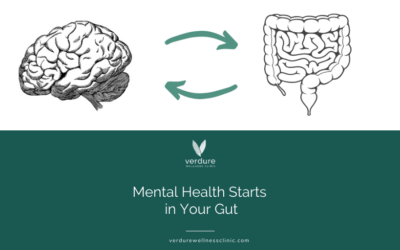 Mental Health Starts in Your Gut