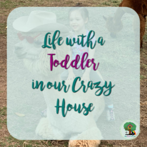 Life with a Toddler in our Crazy House