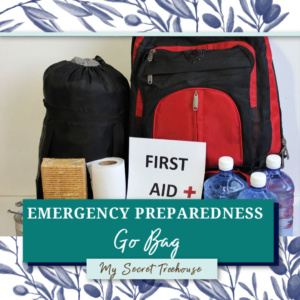 emergency go bag, build emergency go bag, build go bag