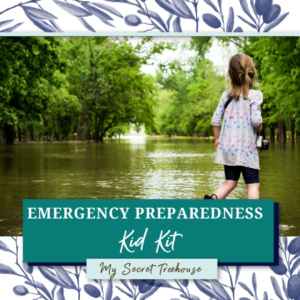 emergency kit for kids, kids emergency kit, emergency kit