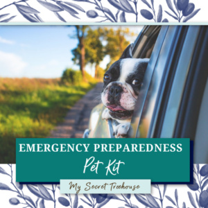 How to Build an Emergency Pet Kit