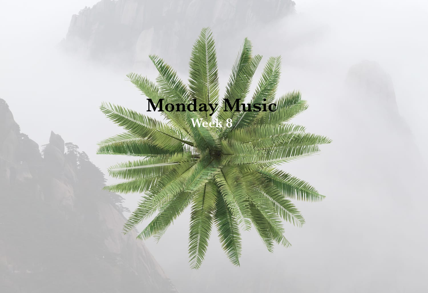 Introducing Monday Music