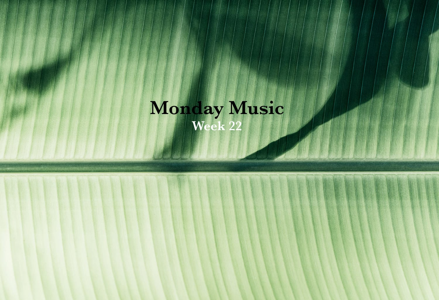 Monday Music Week 22
