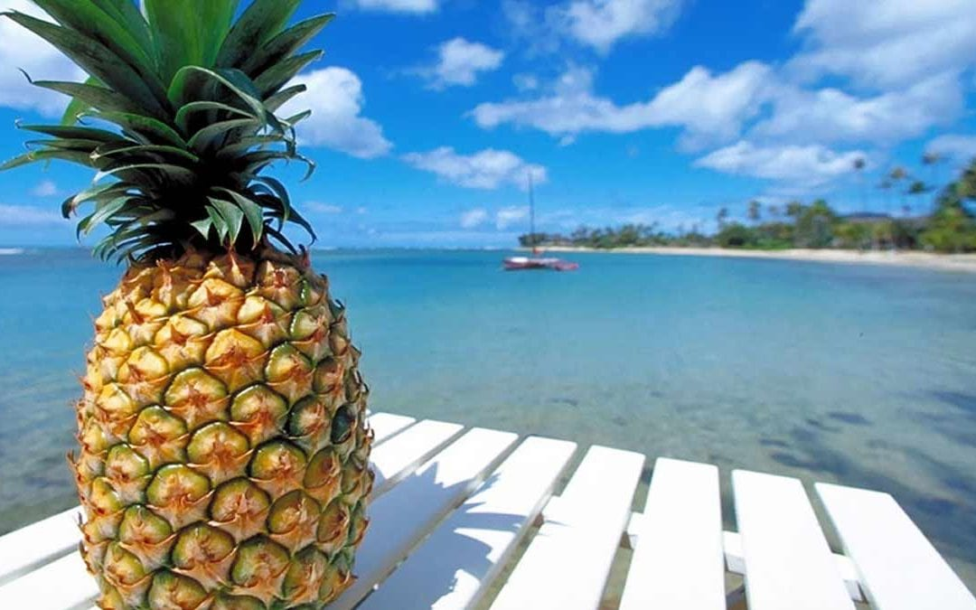 Clean your body out of toxins with Pineapple