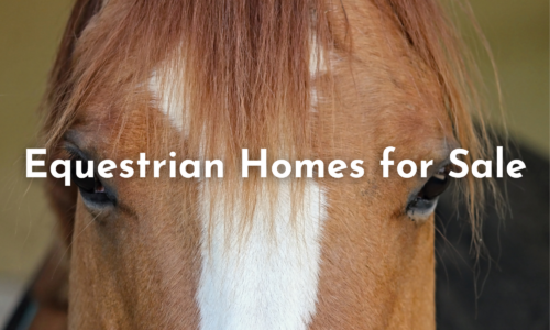 Equestrian Homes