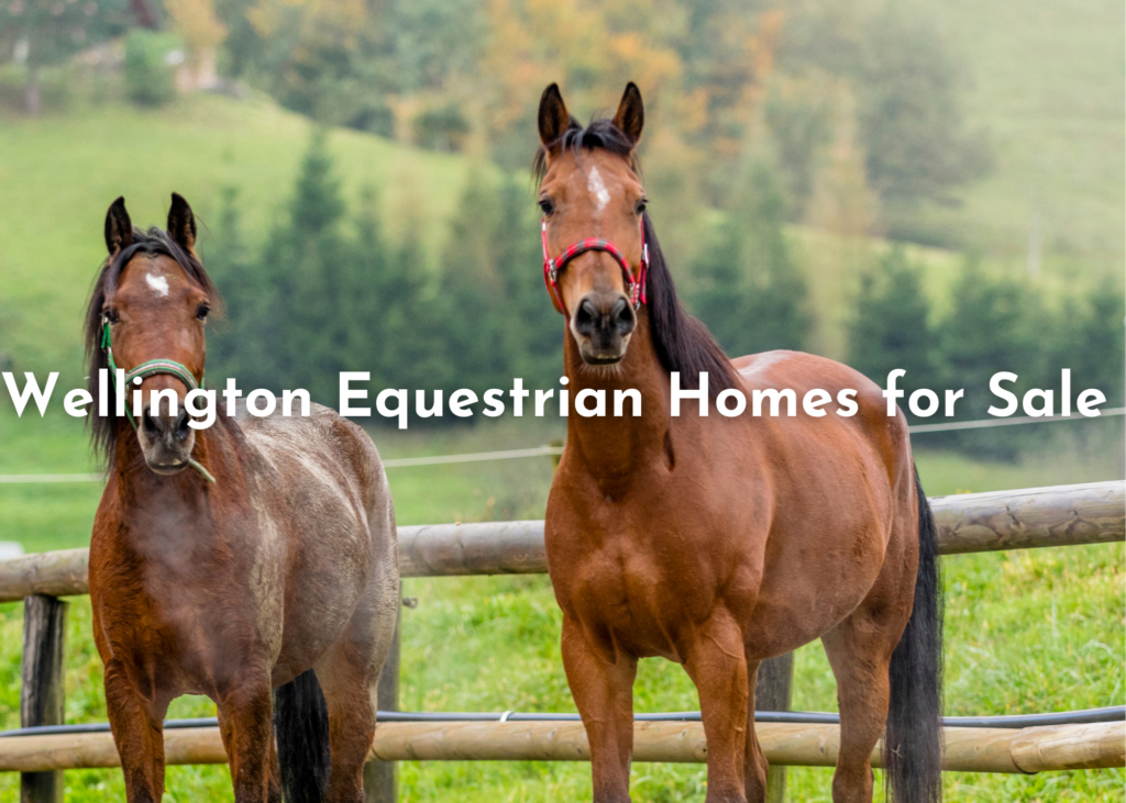 Wellington Equestrian Homes for Sale
