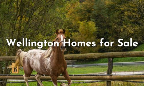 Wellington Homes