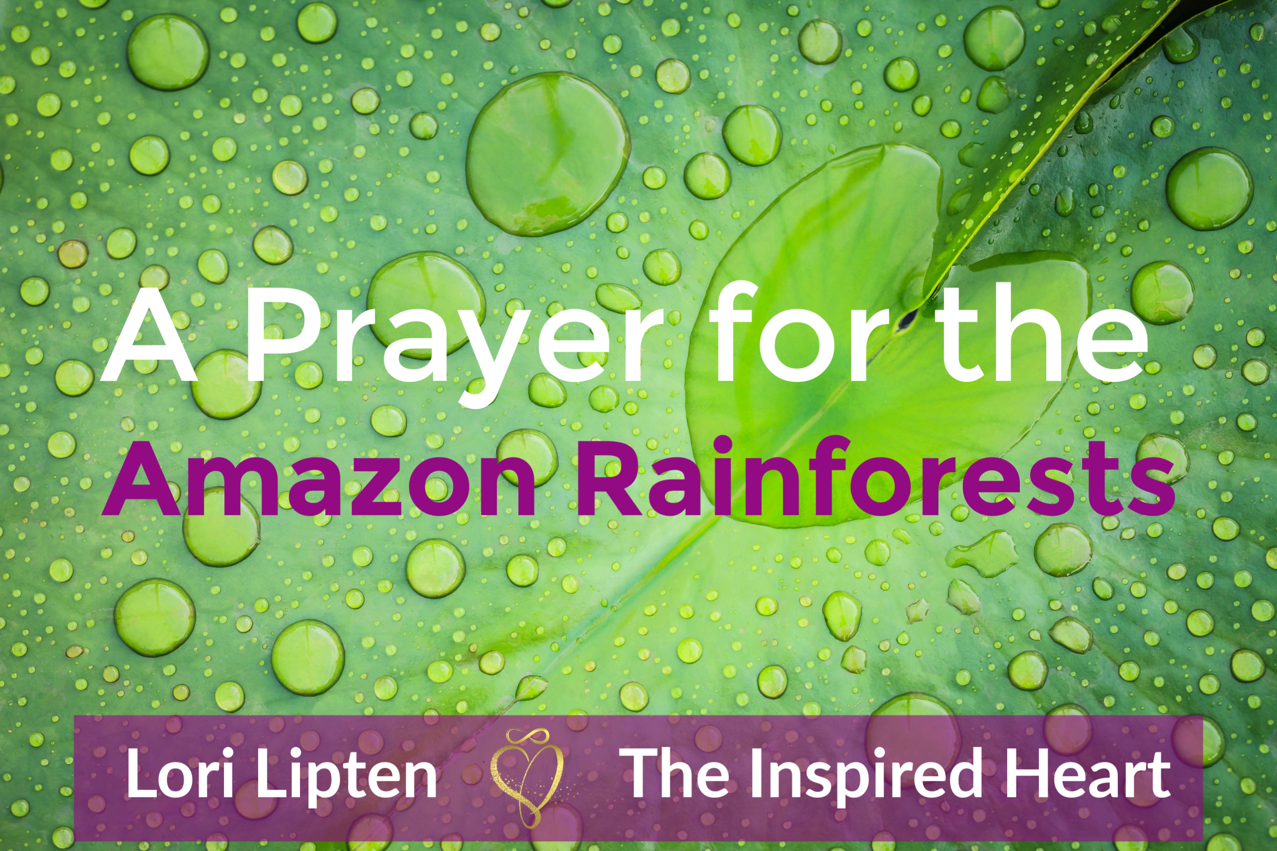 A Prayer for the Amazon Rainforests