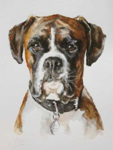 Kingston – Canine Portrait in Pen and Watercolor