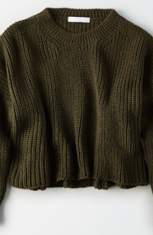 American Eagle DON'T ASK WHY CHUNKY CROP SWEATER