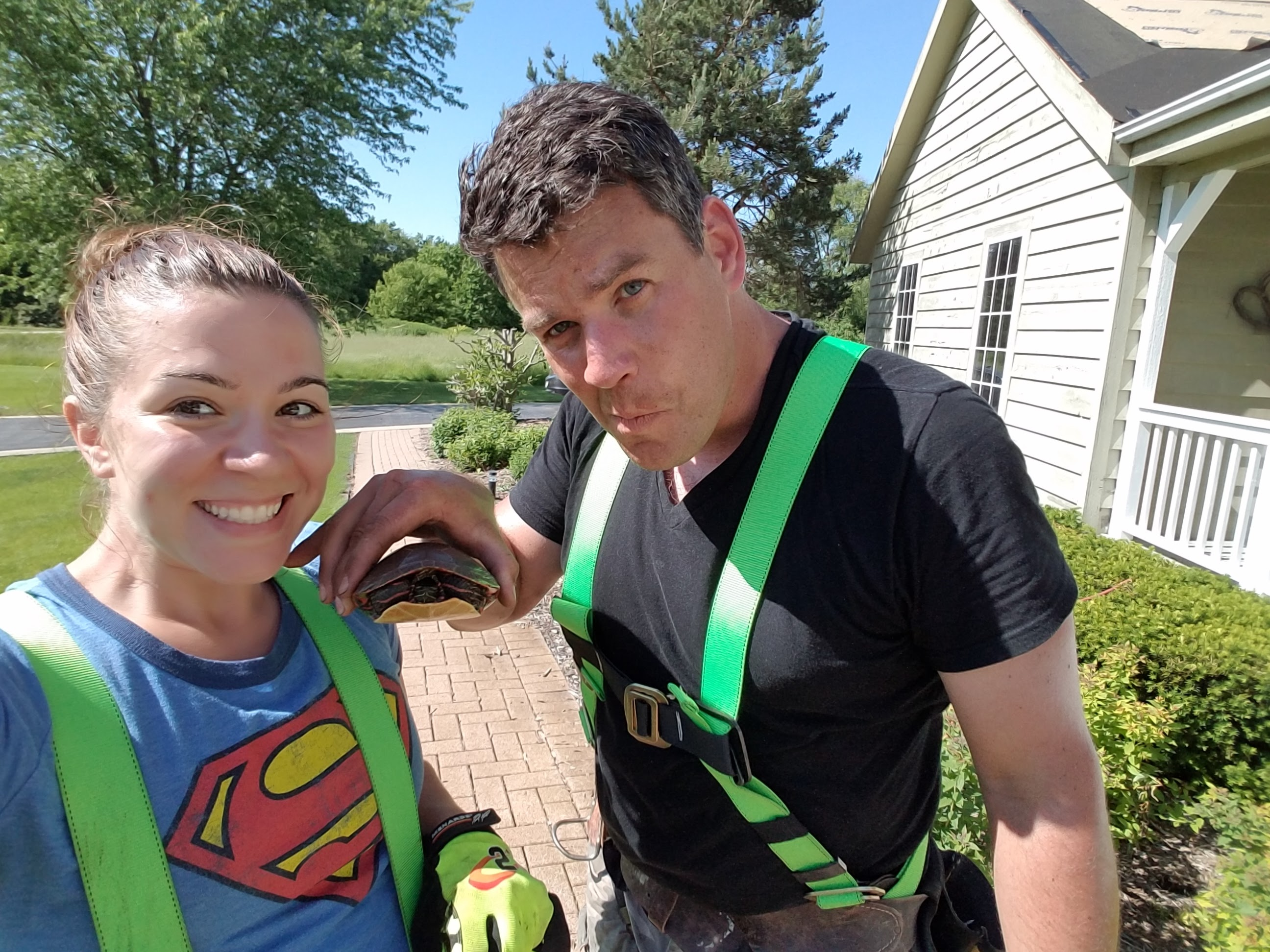 Cindy and Jeff found a turtle while working on the roof