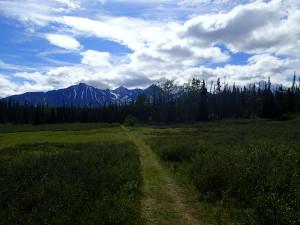 Auriol Trail Kluane National Park