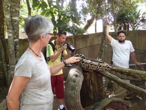 Feli finally touches a snake, Boa Constrictor