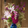 Crinum 'Asian Bell' with Saltbush, asters and mums