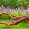 Larkspur used as a visual transition from turf (and pear tree art) to woods on a different farm.