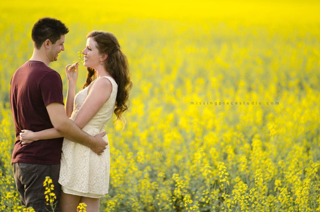 002-alberta prairies Canola Fields Edmonton-
