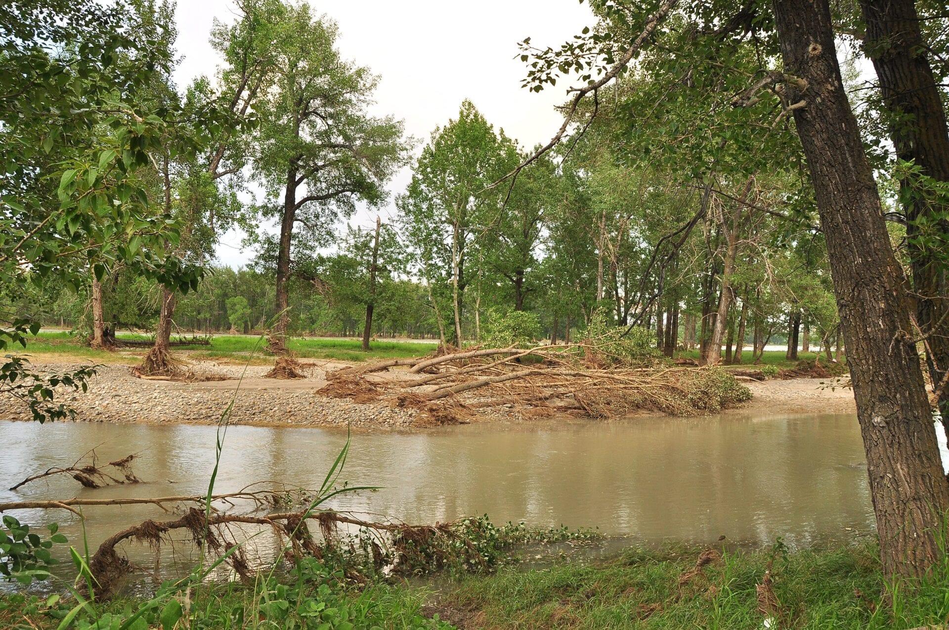 calgary-flood fishcreek- fish creek (12)