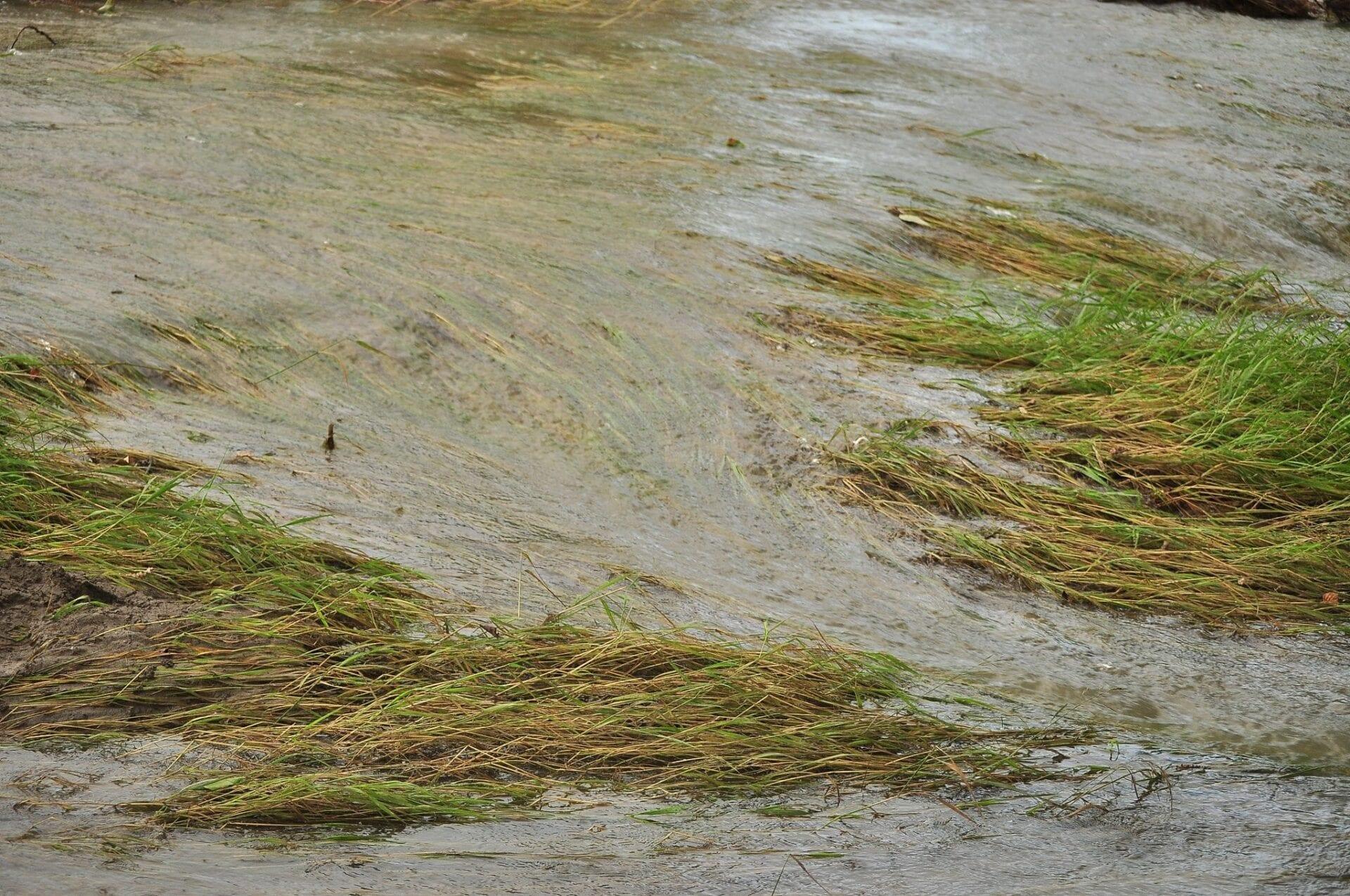 calgary-flood fishcreek- fish creek (7)