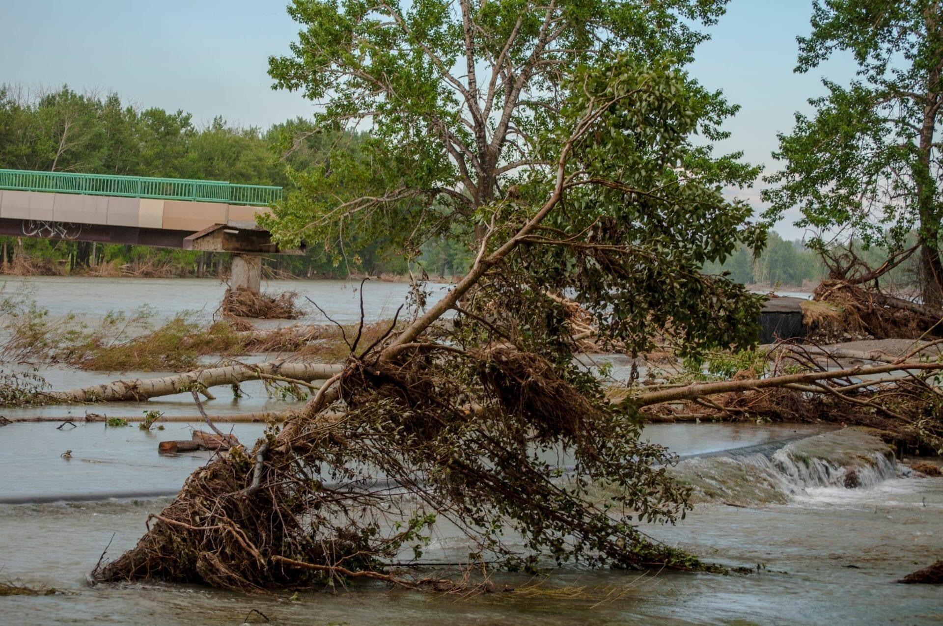 calgary-flood fishcreek- fish creek (8)