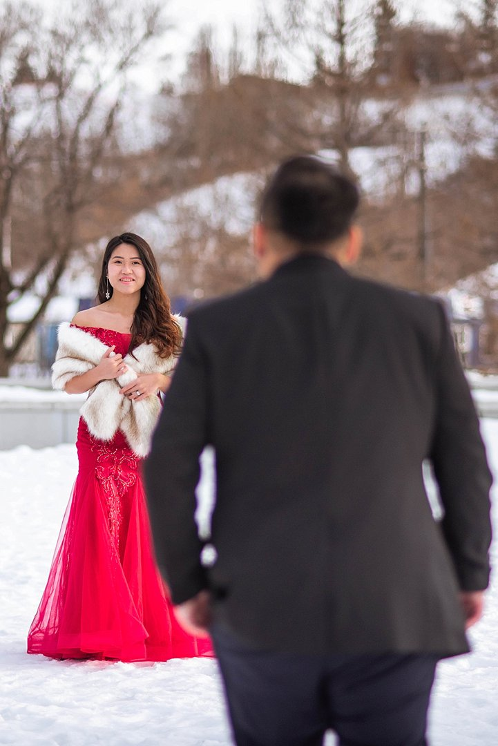 VJ-muttart-winter-engagement-pre-wedding-_0000