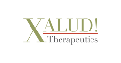 portfolio xalud 2