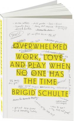overwhelmed_book