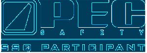 PEC-SSQ-Participant