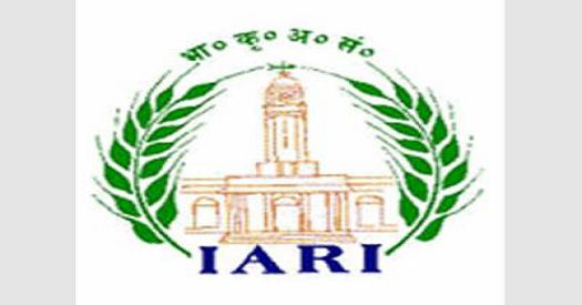 IARI JRF Recruitment