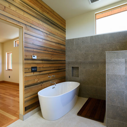 woodrow granite shower and modern bathtub