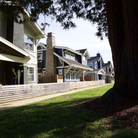 frederick street multi family homes