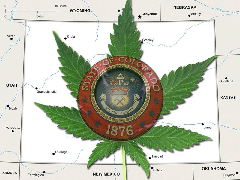 Colorado Marijuana Licensing