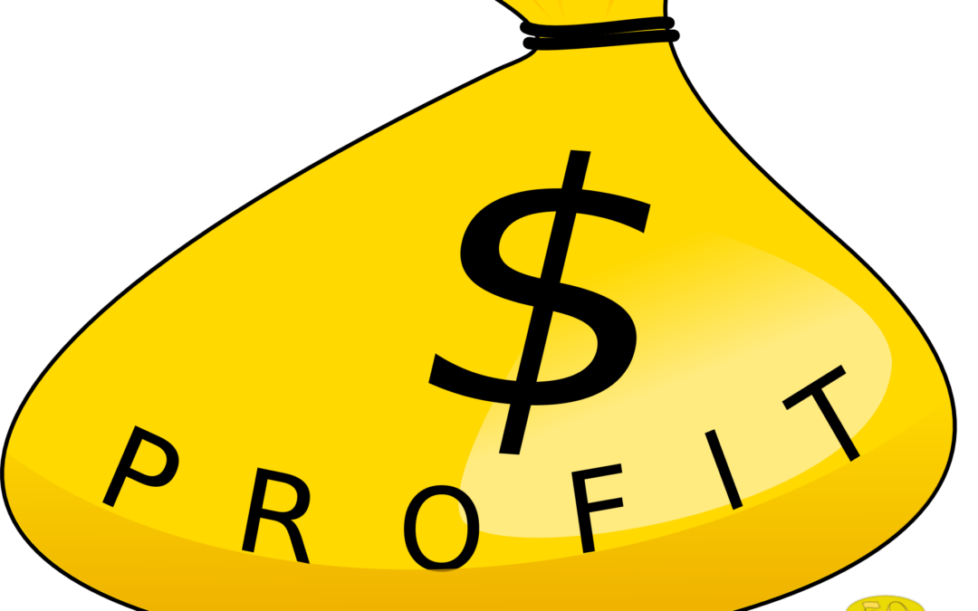 Being Profitable in Unprofitable Times