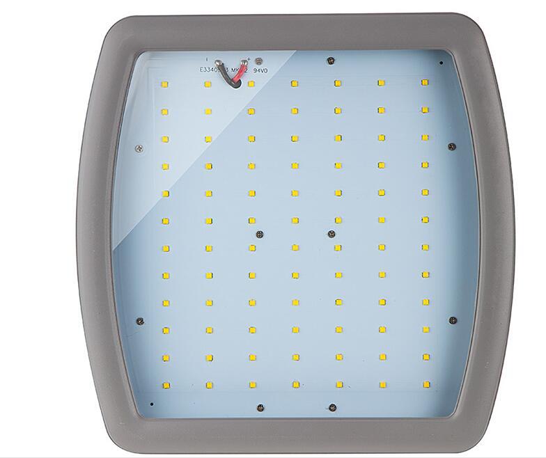 Explosion proof LED flood lights