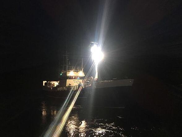 marine grade led flood light