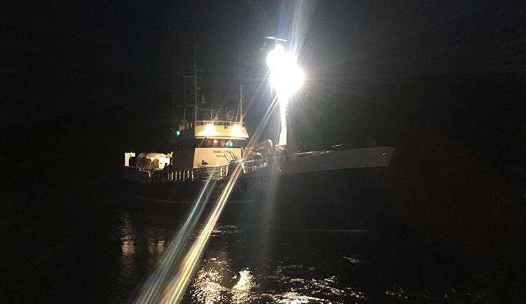 Wholesale marine led flood light