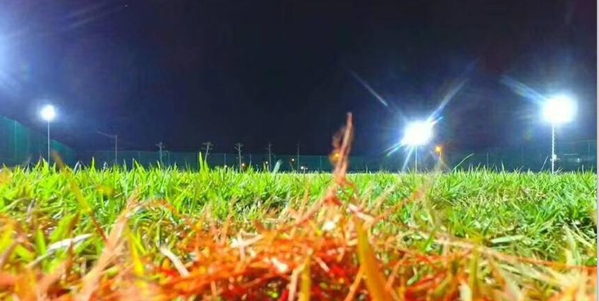 Sports Light Fixture