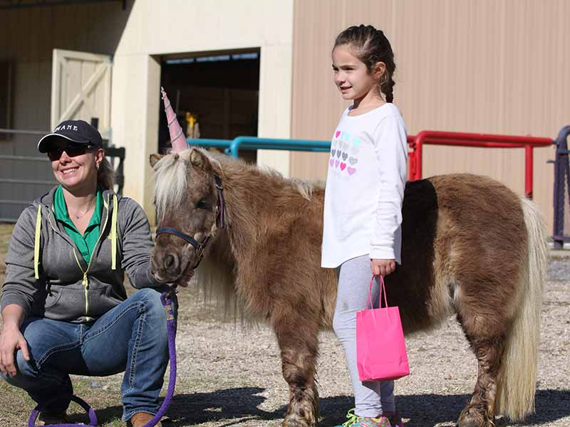Girl with pink bag, woman kneeling and brown mini horse with unicorn hat