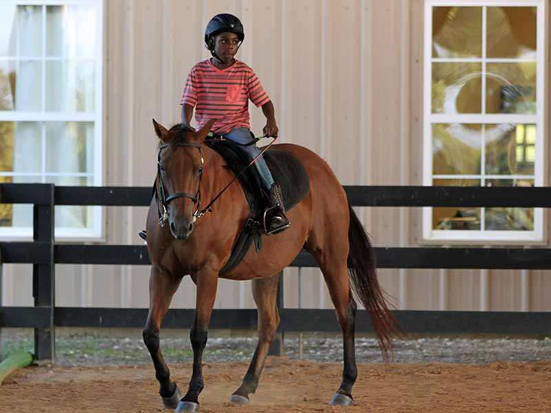 Boy in black helmet riding horse in ring