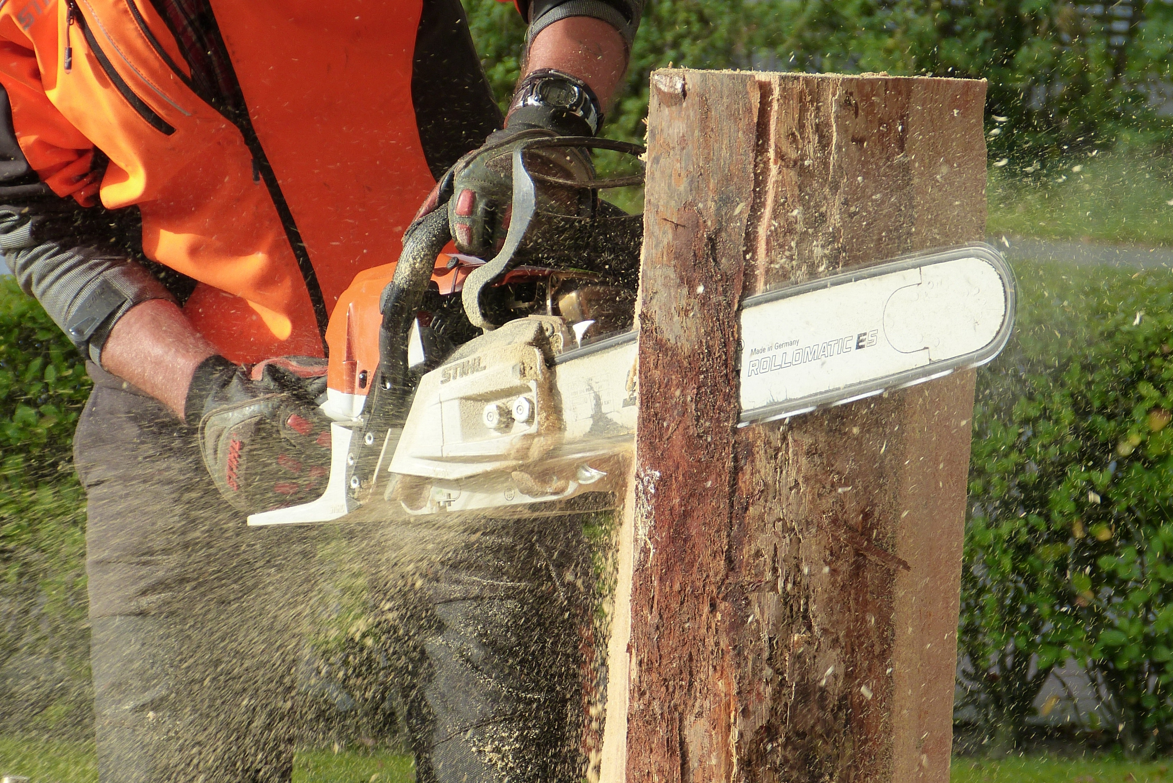 action-adult-chainsaw-209229