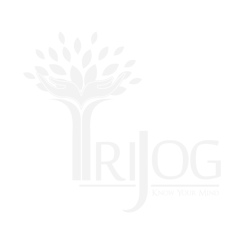 TS work presentation deck- Logo- Trijog- 25 September 2019 FINAL LOGO ARTWORK FILE-10