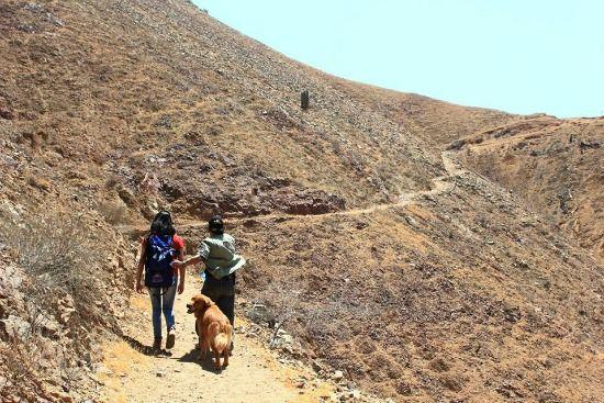 qhapac-ñan-camino-inca-antioquía